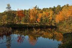 eagle-lake-fall