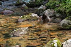 hunters-creek-03-062413
