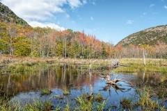 p-canon-brook-trail-01-101313