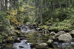 p-hunters-stream-02-101912