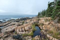 p-shore-path-anp-06-072813