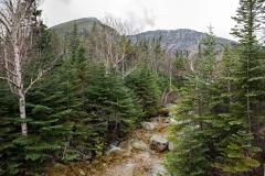 Mt-Stream-on-Chimney-Trl-01